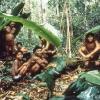 Die Yanomami leben im Einklang mit der Natur