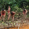 For many weeks, Yanomami women from neighboring villages helped vigorously with the preparation of the building site.
