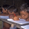 Los pequeños yanomami aprenden en la escuela a leer y a escribir.