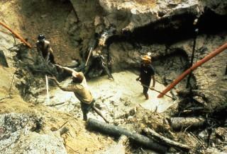 Buscadores de oro