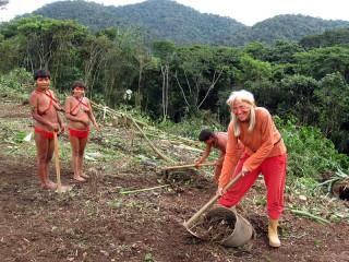Beim Vorbereiten des Bauplatzes im Urwald von Delgado Chalbaud
