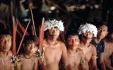 Die Yanomami sind sehr besorgt